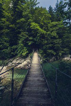 Eenvoudige hangbrug over de rivier Idrijca, Slovenië van Patrik Lovrin