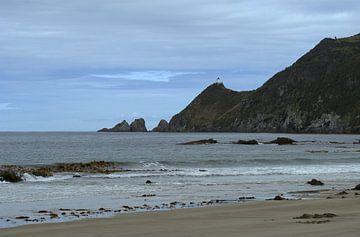 Nugget point - a view from the beach sur Jeroen van Deel