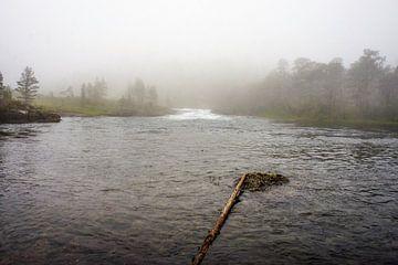 Mistige rivier in Noorwegen van Remco de Zwijger