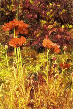 poppies von Yvonne Blokland