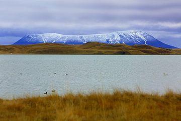 Tafelberg in IJsland van Patrick Lohmüller