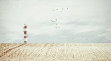 Der Leuchtturm von Lars van de Goor