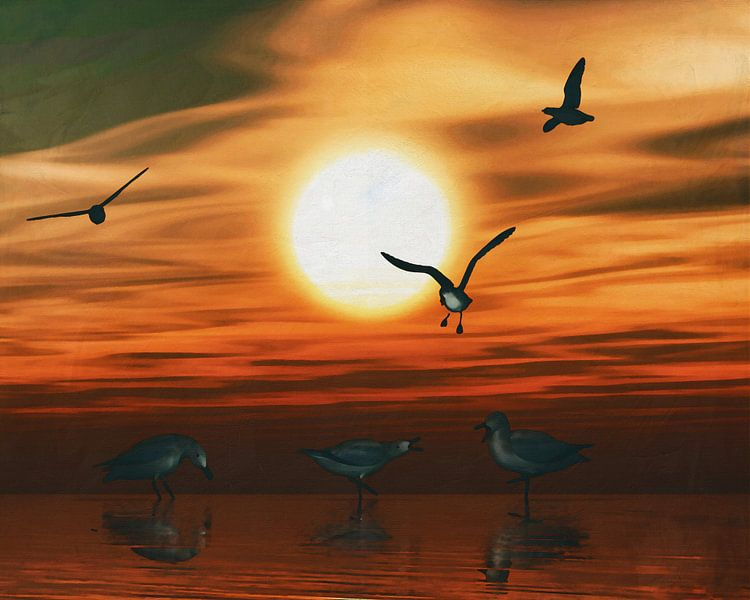 Meeuwen bij zonsondergang 2 van Jan Keteleer