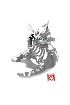 wassende kat van philippe imbert