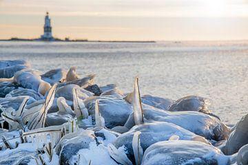 Paard van Marken - winter - met ijs in het Markermeer van Studio de Waay