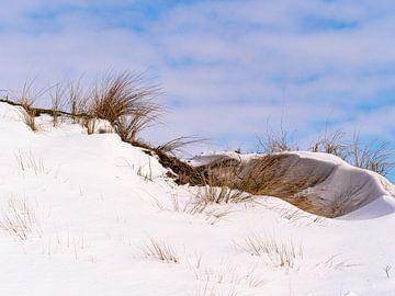 Winter in De Zilk van Dirk van der Plas