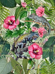 Tropical Paradiese With Iguanas