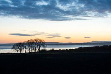 Schotland sur René Schotanus