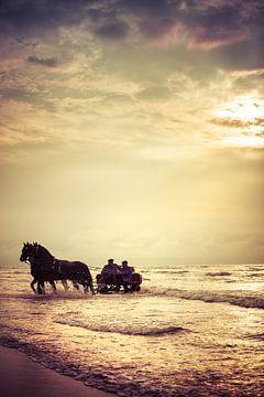 Met de paardenkar door de golven von Evert Jan Kip