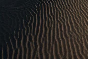 Paracas von Luc Buthker