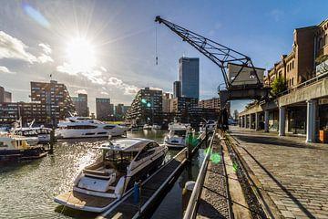 Monaco aan de Maas, City Marina Rotterdam van Peter Hooijmeijer