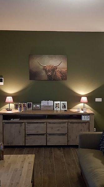Klantfoto: Schotse Hooglander van Diana van Tankeren
