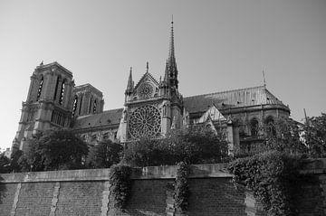 Die Kathode Notre-Dame de Paris - BW1 von Richard Pruim