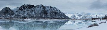 Winterpanorama von Hetwie van der Putten