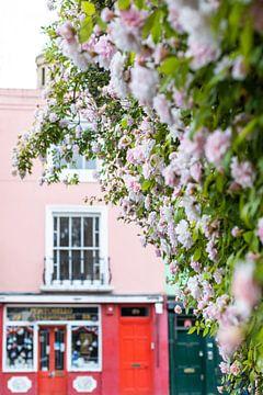 Roze rozen en kleurrijke huizen van Angeline Dobber