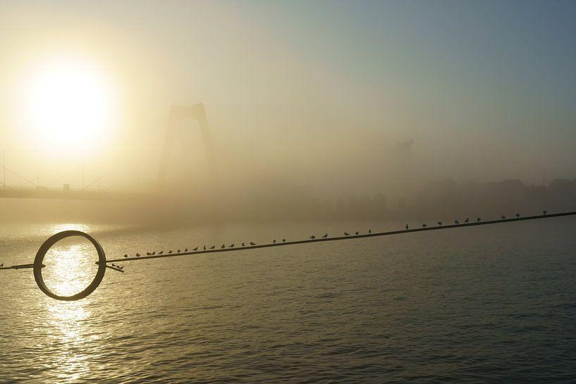 Willemsbrug Rotterdam in de mist van Michel van Kooten