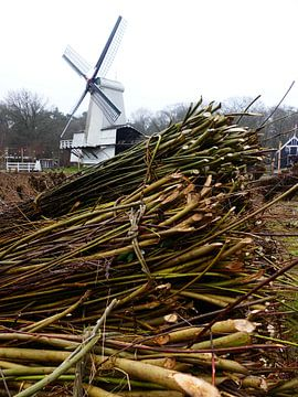 Wilgentakken en een witte molen van Petra Dielman