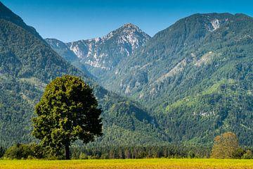 Un paysage de Carinthie avec une vue sur la montagne Hochobir