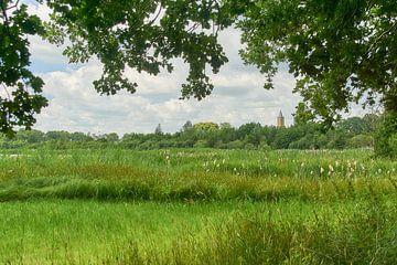 Amerongs Landschaft vom Bovenpolder von Ad Jekel