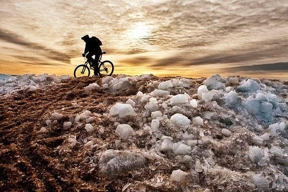 Mountainbiker op ijsberg von Fokje Otter