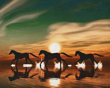 Paard bij zonsondergang galopperend in de zee