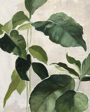 Étude tropicale II, Julia Purinton