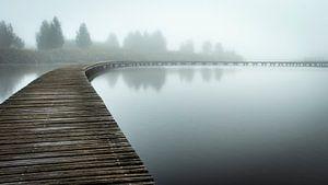 Verdwijn in de mist