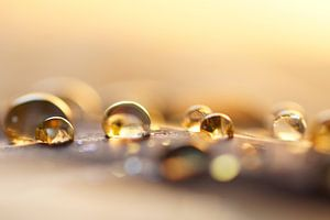 Golden drops van Carla Mesken-Dijkhoff