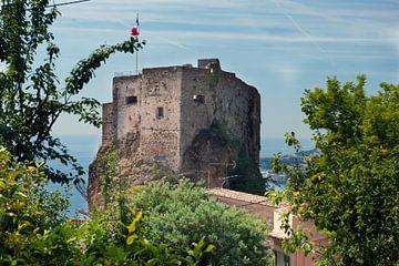 Fort nabij Monaco maar in Frankrijk. van Brian Morgan