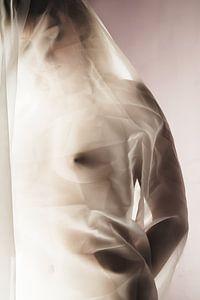 Female beauty 1 van Peter Mantel