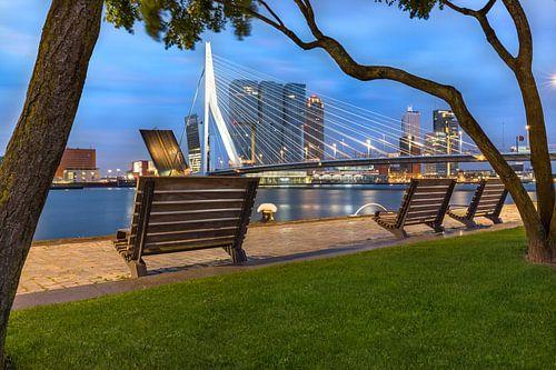 Open Erasmusbrug op vroege ochtend Rotterdam van