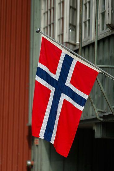 De vlag van Noorwegen van Menno Schaefer