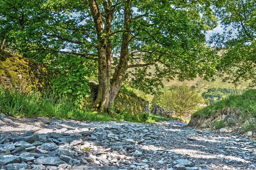Landweg in het Lake District van Frans Blok