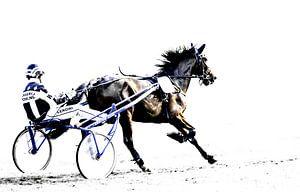 Full speed van Henk Ravenhorst