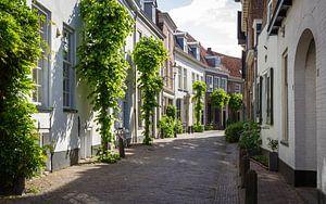 Oude Binnenstad van Peter Nederlof