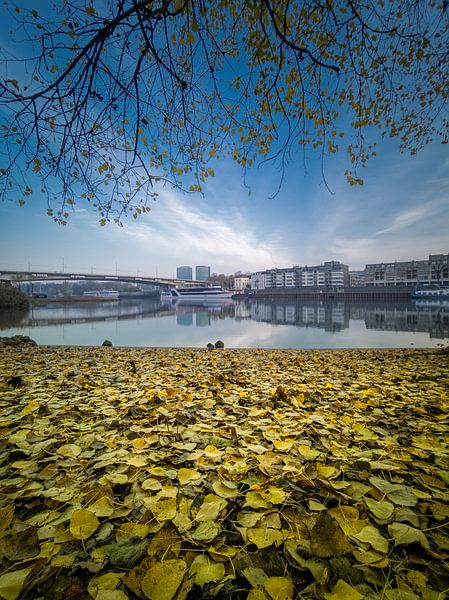 Herbst von Paul Glastra Photography