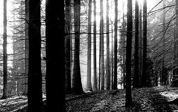 Winterzeit von Thomas Jäger