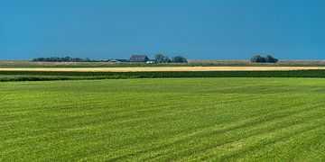 Friesische Landschaft gleich hinter dem Wattendijk bei Holwerd von Harrie Muis
