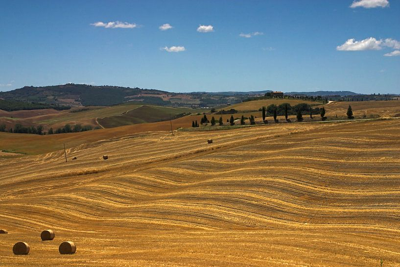 Golvende heuvels in Toscane van Dennis Wierenga