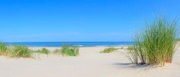 Strand panorama in de duinen aan de Noordzee tijdens de zomer van Sjoerd van der Wal