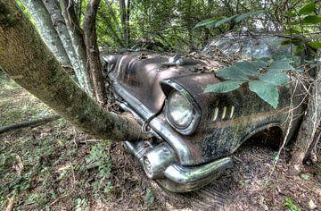 Car eats tree van Jos Hug