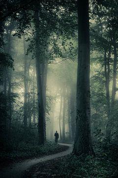 Verdwaald tussen de bomen von Niels Barto