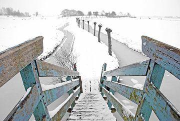 kakelepost in de sneeuw van