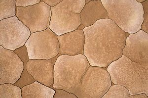 De grond in Deathvlei in Namibië