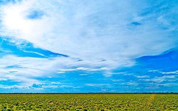 Landschap: blauwe lucht in Botswana, Afrika van