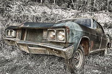 Buick Skylark - oldtimer terug uit een andere dimensie van Jelte Bosma