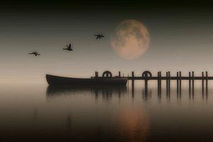 Boot aan pier in het meer met ganzen