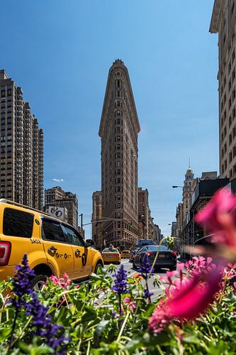 New York     Flatiron Building