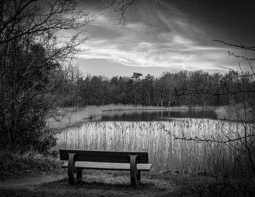 Bank im Naturschutzgebiet mit Blick in schwarz und weiß von Marjolein van Middelkoop
