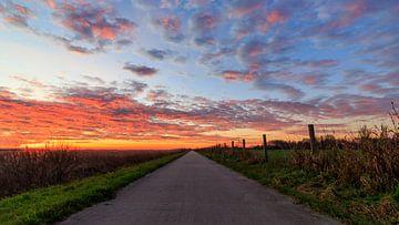 Weerribben NP: Weg naar de zonsopkomst van Photo Henk van Dijk